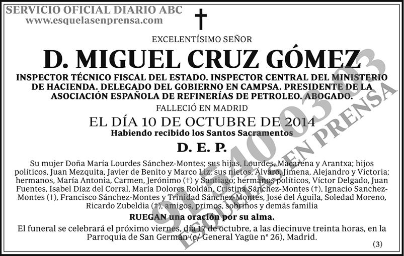 Miguel Cruz Gómez